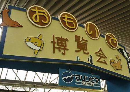 20140809 松島 マリンピア04