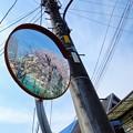 Photos: Mirror