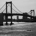 Photos: 3390_Monotone-Rainbowbridge