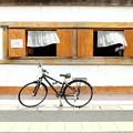 Photos: 風の通る窓辺