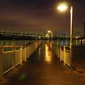 雨上がりの桟橋