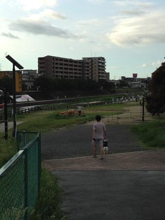 20140806 ウォーキング風景 桜堤公園