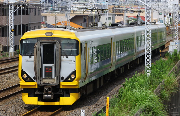 E257系特急新宿さざなみ3号