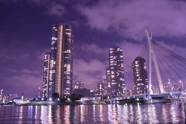 月島・中央大橋と高層ビル群と隅田川(2)