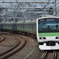 Photos: 山手線E231系500番台 トウ537編成