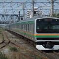 東海道線・上野東京ラインE231系1000番台 S-08編成他15両編成