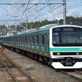 常磐快速・成田線E231系0番台 マト101編成