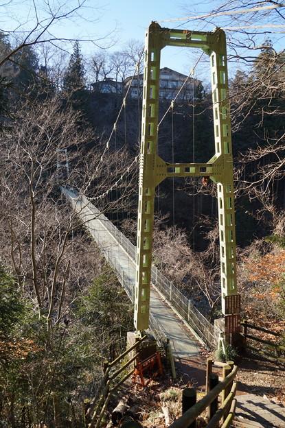 天竜峡 つつじ橋