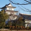 Photos: 関宿城博物館 3