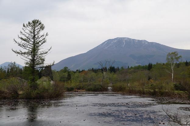 黒姫山といもり池