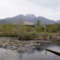 Photos: 妙高山といもり池 2