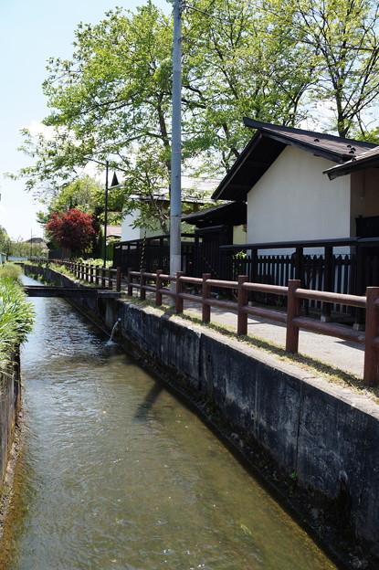 長井 平野川遊歩道