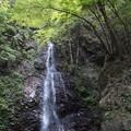 檜原村 払沢の滝 4