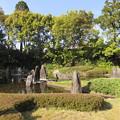 Photos: 松尾大社・蓬莱の庭 076