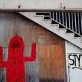 Photos: 赤いサボテン