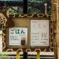 Photos: ikeda1408020021
