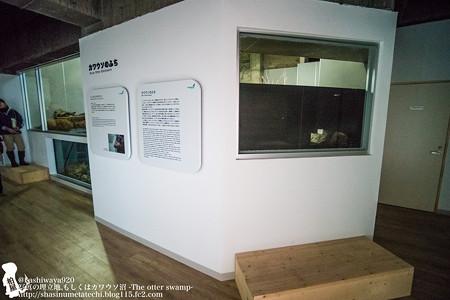 inawashiro151219006