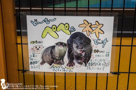 oouchiyama1507120005