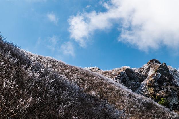 鳩穴分かれの霧氷