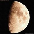 Photos: 九夜月 11:04 (ガッシュ)