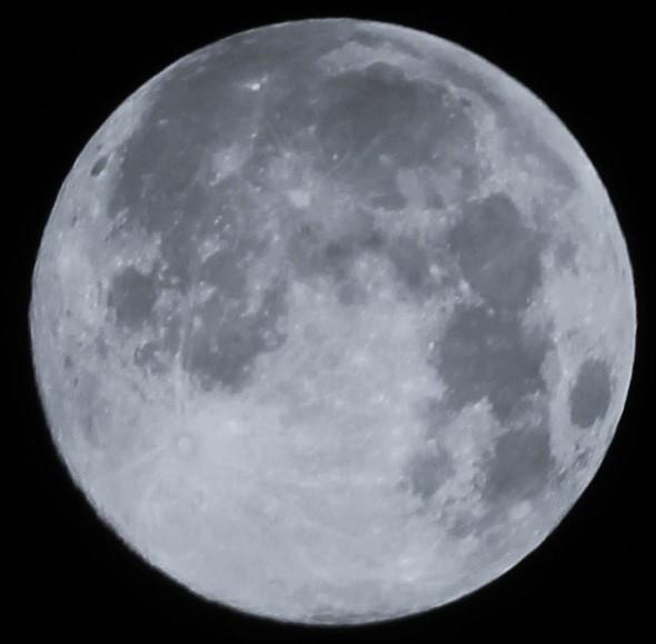 月は・・ス-パ-ム-ンに (モノクロ)  2014:08:11