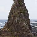 Photos: トトロ岩
