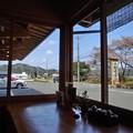 Photos: 朽木 旭屋