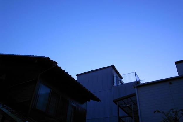 Photos: R0011365.JPG