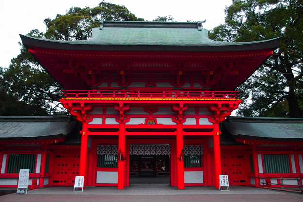 氷川神社 桜門