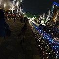 Photos: 光都東京2