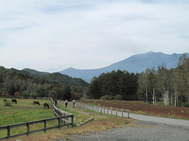 IMG_8476 木曽駒の里からも御嶽山