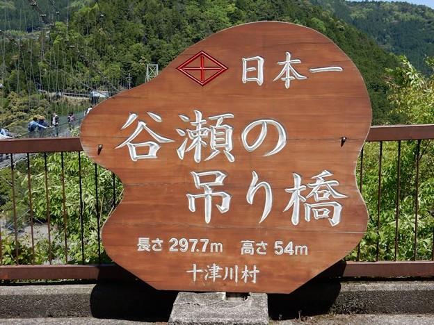 写真: DSCN0592 谷瀬のつり橋