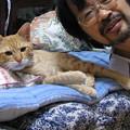写真: 2008年9月25日の茶トラのボクチン(4歳)