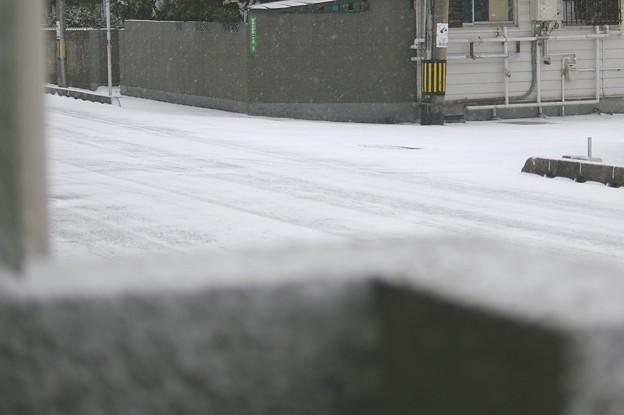 Photos: 2016年1月24日の寒波襲来、初雪(下関市)