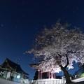 写真: 寺と桜と星と