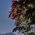 輝く支笏湖・輝く紅葉