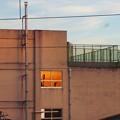写真: 「青空」から「夕焼け空」へ…