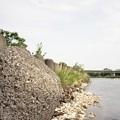 写真: 201205-04-035PZ