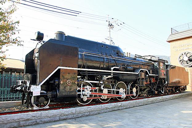 D 51 51