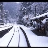 abshima