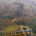 秋の鉄道♪