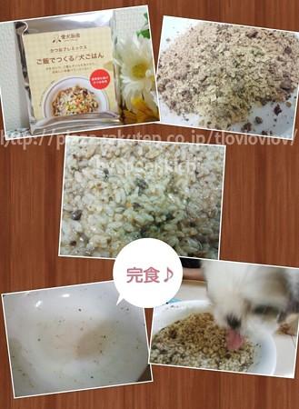 愛犬厨房 おためしBOX (48)