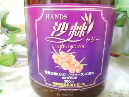 ハンズ沙棘ジュース (2)