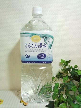 こんこん湧水 (19)