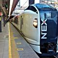 Photos: 新宿のNEX