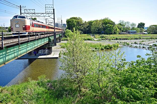 新緑の河川敷(3)