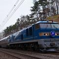 Photos: 8010レ 寝台特急カシオペア EF510-512+E26系