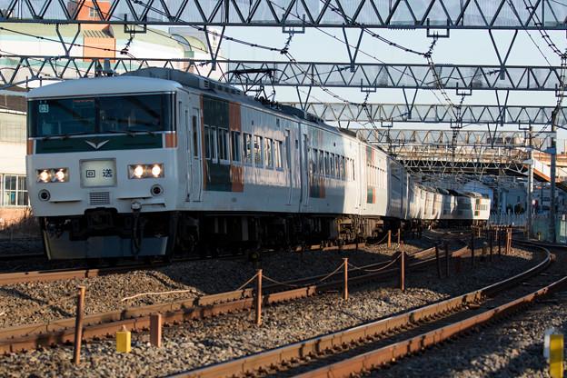 185系団体臨時列車(回送)@ワラナン