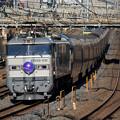 Photos: 8010レ寝台特急カシオペア@新浦和橋