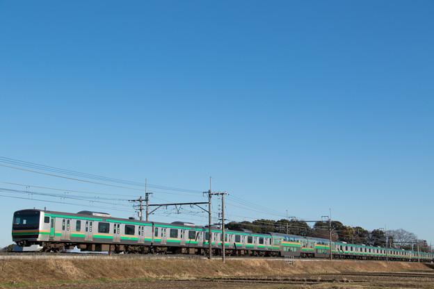 E231系@ヒガハス